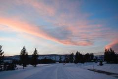 Yellowstone-Winter-2014-65