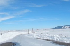 Yellowstone-Winter-2014-71