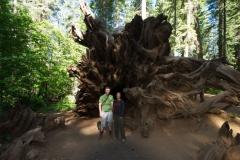 Yosimite-Big-Sur-Halfmoon-bay-2011-16