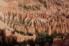 Zion-and-Bryce-2008-44
