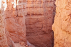 Zion-and-Bryce-2008-5