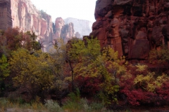 Zion-and-Bryce-2008-53